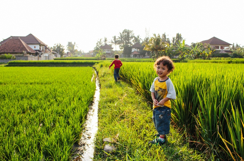 bali rice paddy walk kids